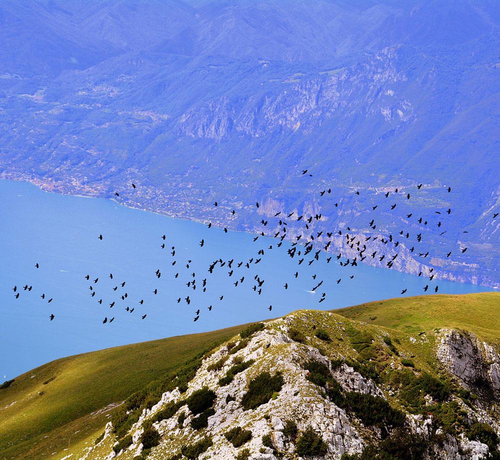 Utsikt över Gardasjön från Monte Baldo